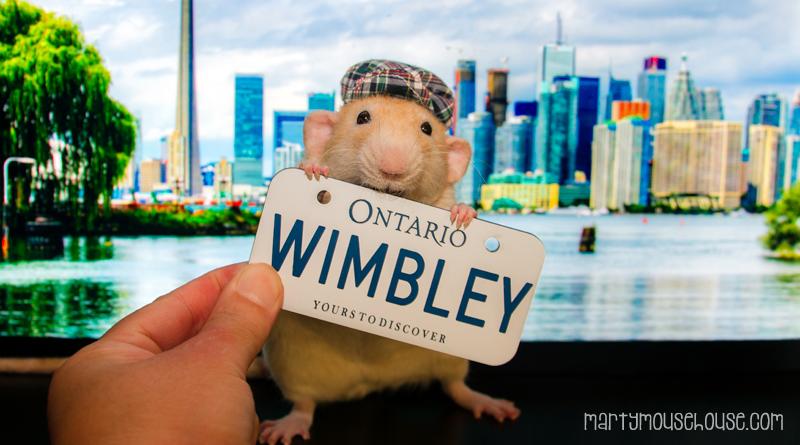 ON_wimbley