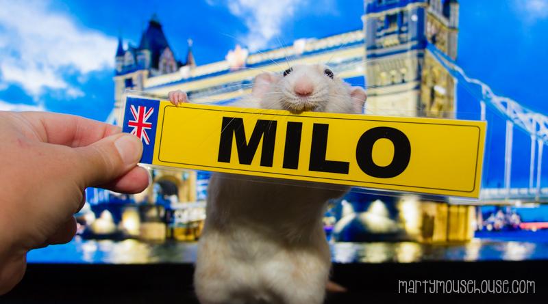 UK_milo