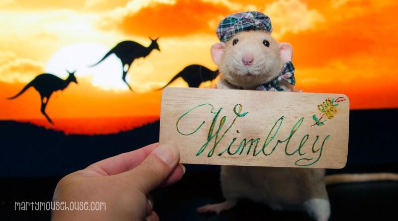 wimbley_australia