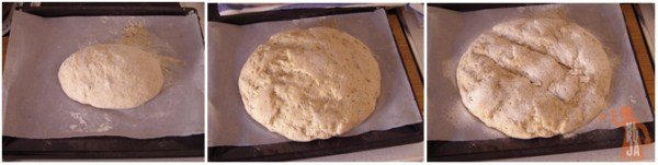Paso a paso 2 del pan integral de centeno