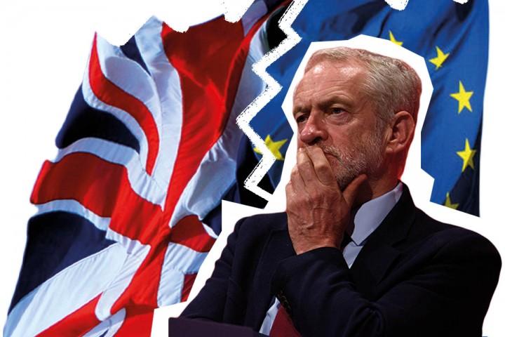 LabourBrexit 2 Image Socialist Appeal
