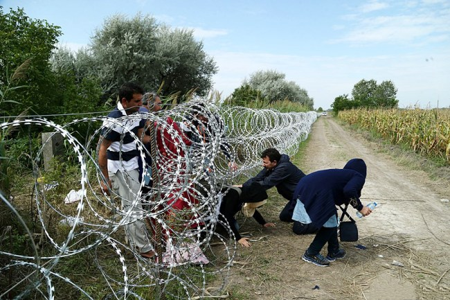 Migrants in Hungary 2015 Image Gémes Sándor SzomSzed