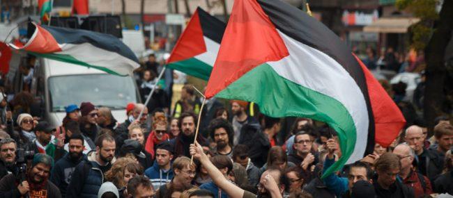 Palestine flag demonstration Image Nowadays