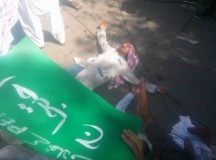 2nd day Punjab teachers sit-in protest against Privatization 02