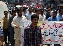 Kashmir Health Workers Successful Strike (10)