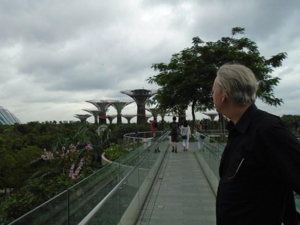 Singapore gardens1