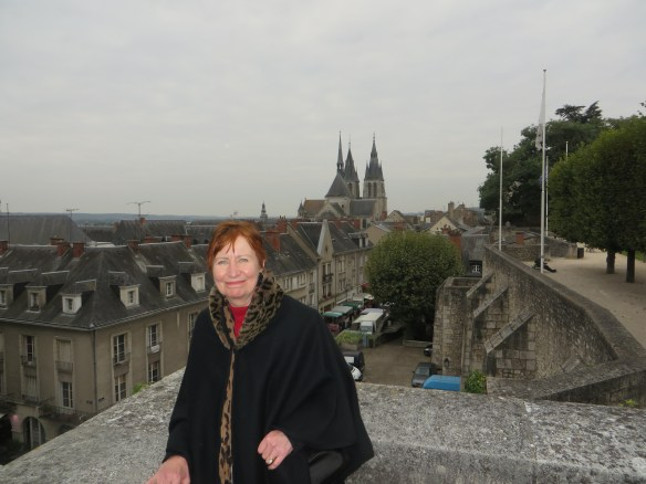 Blois rooftops