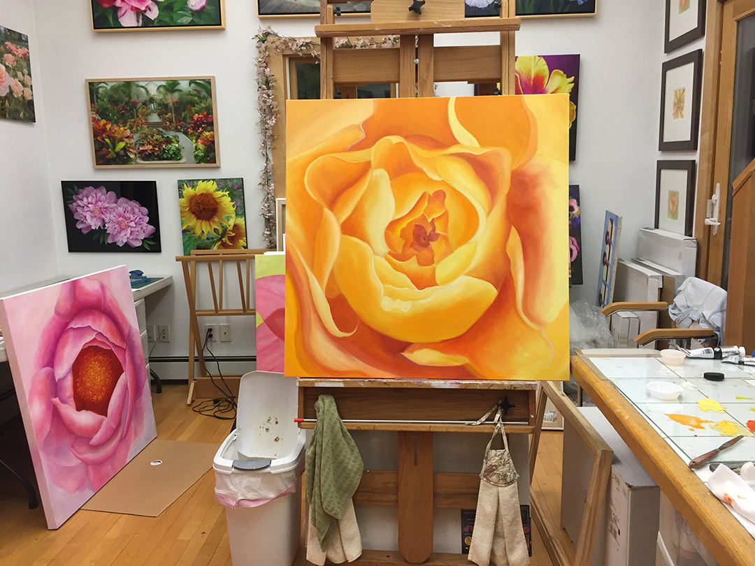 Mary Ahern's studio February 2018