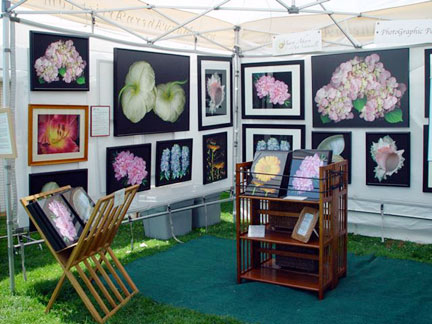 My Festival Show booth