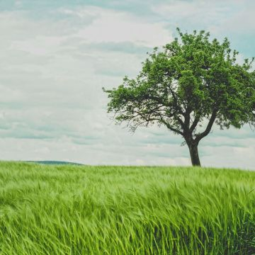 Receiving Spiritual Guidance