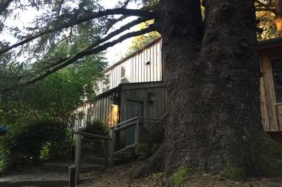 Sitka Residency