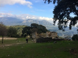 New Year's Day walk along a brief stretch of the Smuggler's Route (Ruta de los Contrabandistas) from Gibraltar to Ronda.