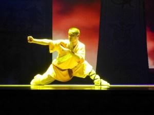 Martial arts dancer