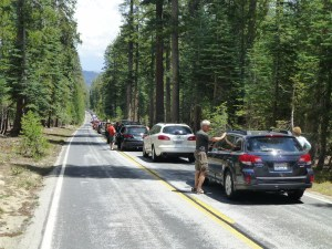 One of the perils of traveling through the park is that you can be held up by road work for 20 minutes at a time.