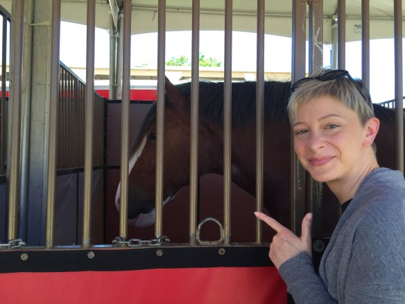 Sarah and Clydesdale