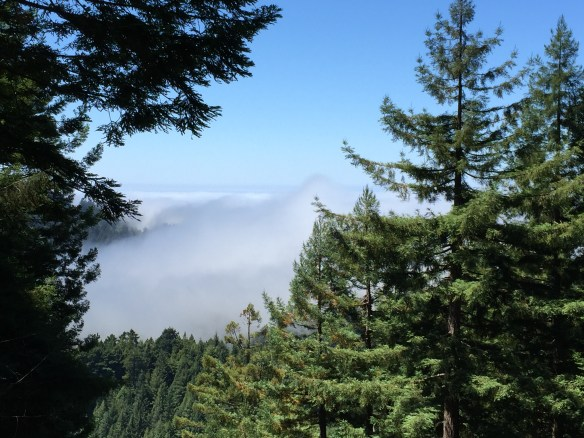 The marine layer rolling back in