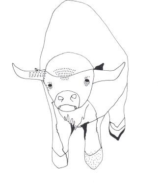 "Buffalo // 10"" x 8"""