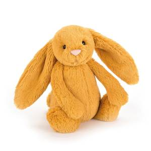 Bashful Saffron Bunny Jellycat Teddy Mary Shortle