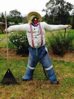 KEN04 Scarecrow Name: Corneleus Owner: Helen Adams 73 Chapple Rd Cambroon 4552 Registration Centre: Kenilworth Category: Traditional