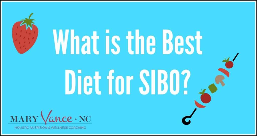 SIBO, small intestine bacterial overgrowth