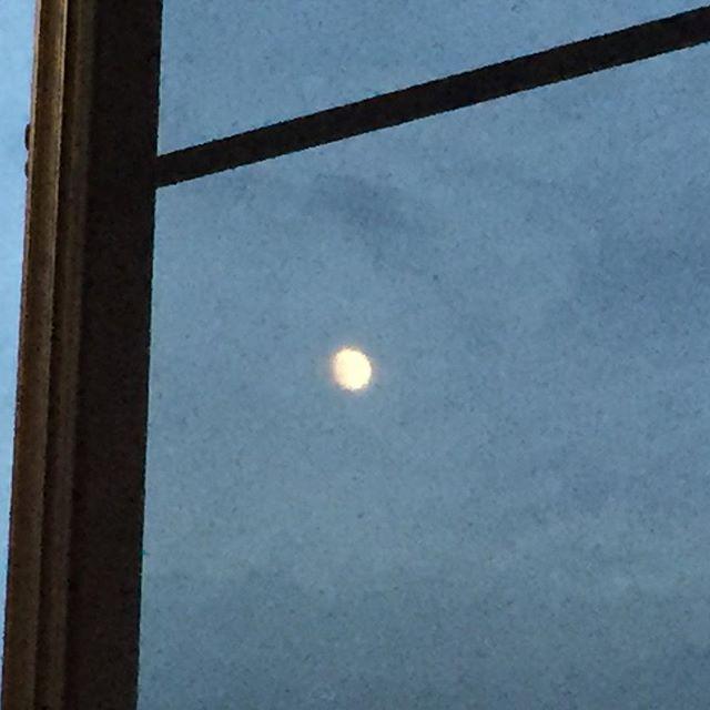 自室で動けずに、ふと窓を見ると朧月