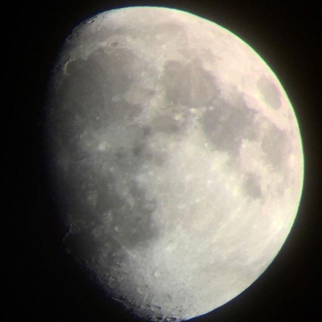 久し振りに月