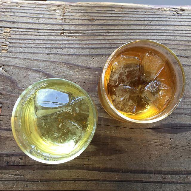 右が水出し紅茶。左が氷出し緑茶。#masasfactory