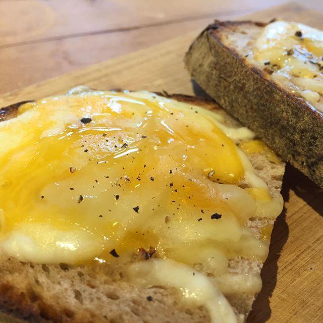 お昼ごはん 。  リュネットのパンにチーズと黒胡椒。 野々山養蜂園のハチミツをひと垂らし。