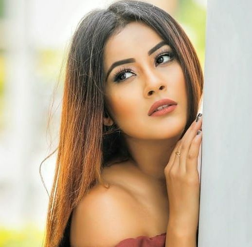 Shehnaaz Gill Cute Hot Gorgeous Pictures