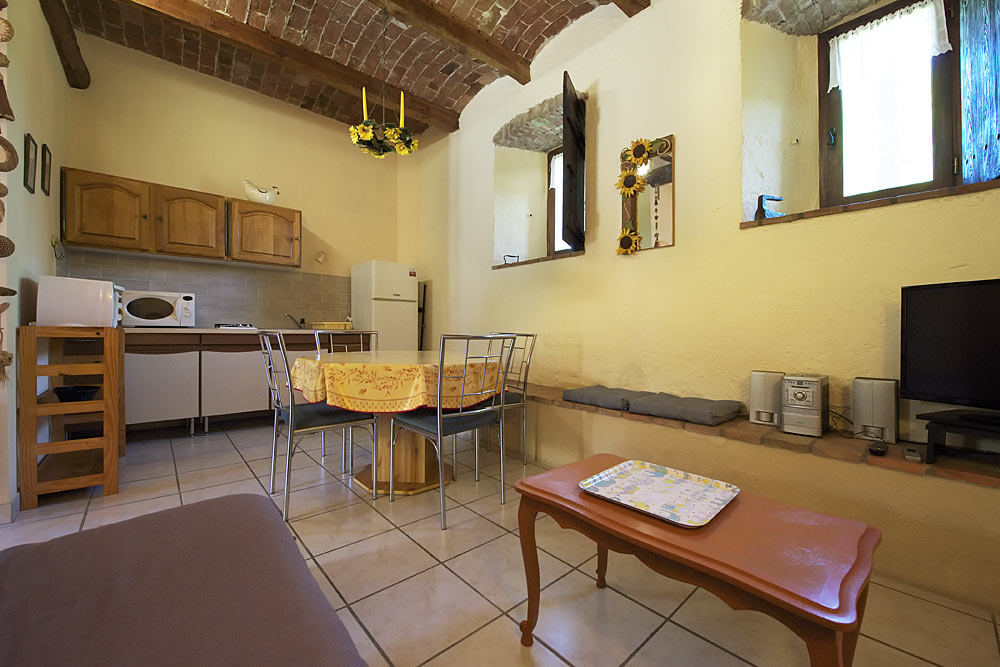 Le salon avec TV écran plat, table basse et chaine hifi dans le studio Romarin avec plafond voûté au Mas de la Baillyde, gîtes de charme en Cévennes