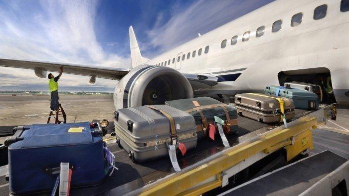 jasa pengiriman bagasi pesawat