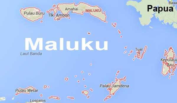 Jasa Ekspedisi Ambon Maluku aman