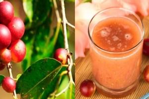 6 beneficios del camu camu para la salud
