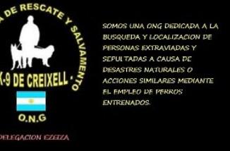 Perros Entrenados para Rescate en Terremotos
