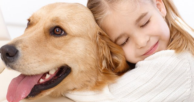 Cómo las mascotas mejoran nuestras vidas