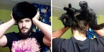 gato loco 01