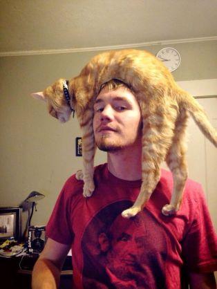 gato loco 06