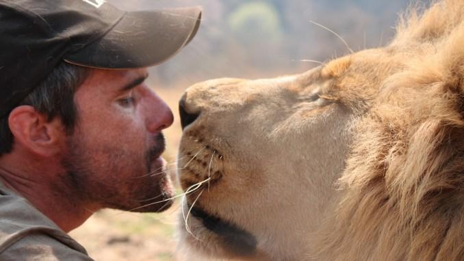 Por qué defender a los animales