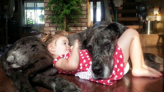 fotos de bebés con sus mascotas