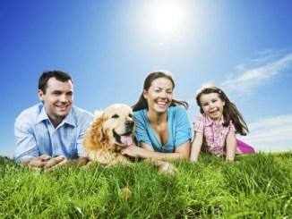 Qué beneficios nos puede traer compartir la vida con una mascota