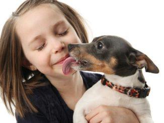 Debemos dejar que los perros nos besen