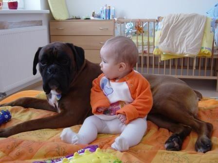 Las mascotas y el contacto con los niños