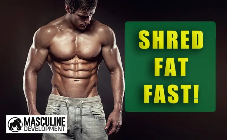 how to shred fat get shredded