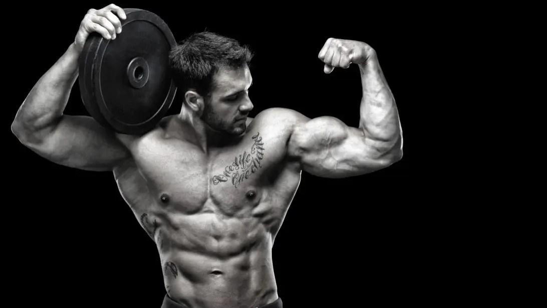 best multivitamins for bodybuilding multivitamins