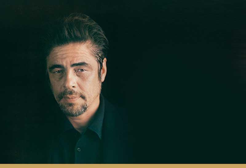 Benicio Del Toro sarà presidente della giuria di Un Certain Regard - Foto di Myrna Suare