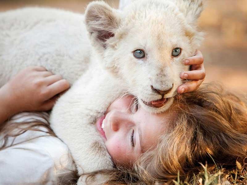Marzo in Cineteca: il film Mia e il leone bianco