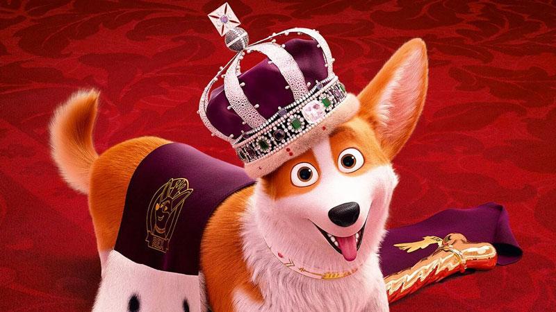 il film Rex - Un cucciolo a palazzo ad aprile in Cineteca