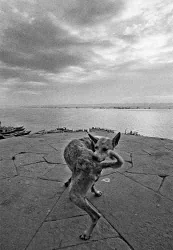 Ferdinando Scianna, Varanasi, 1972 © Ferdinando Scianna