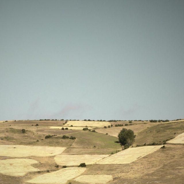fields of loneliness Hamed Masoumi Tehran 5