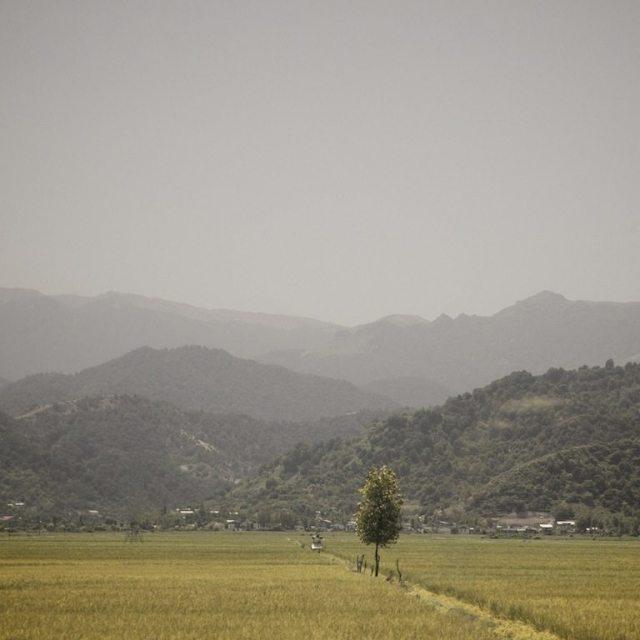 fields of loneliness Hamed Masoumi Tehran 8
